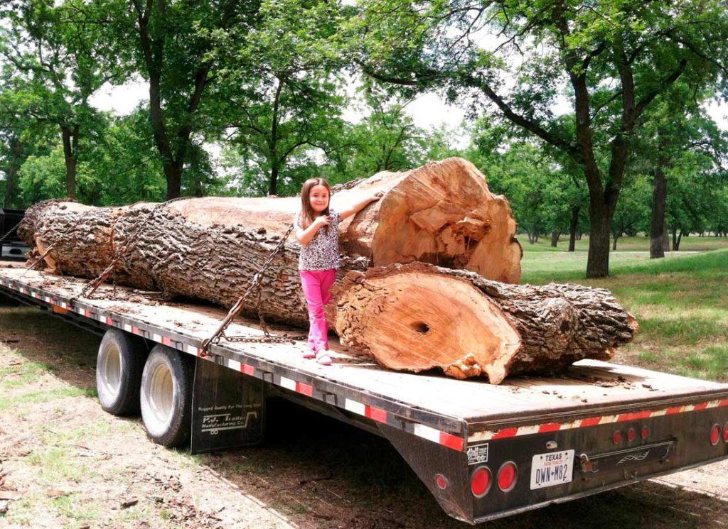 Slabs05 Texas Pecan Wood