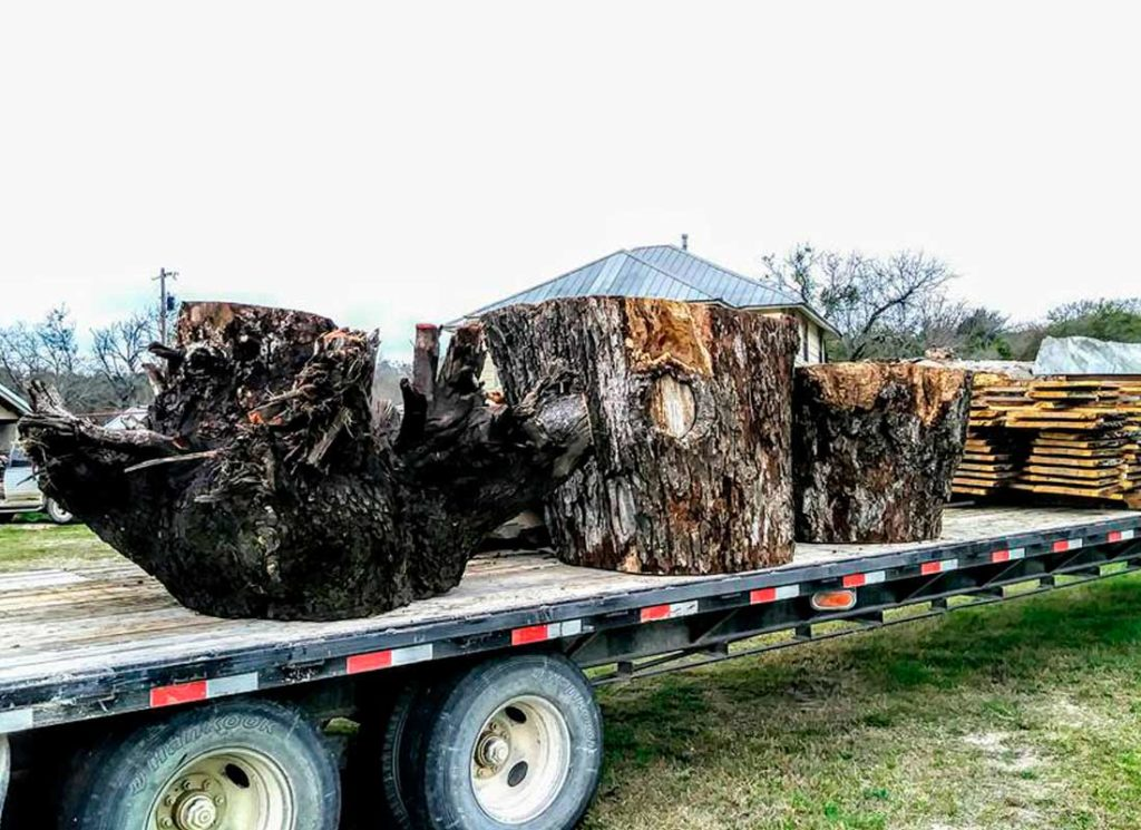 Slabs08 Texas Pecan Wood
