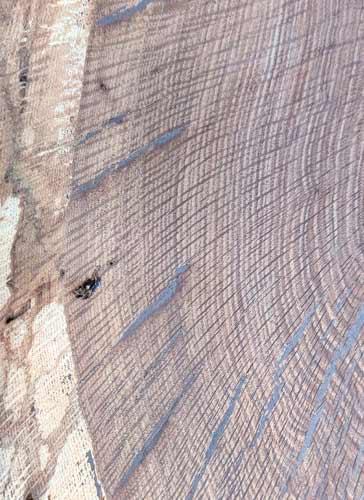 English Oak Texas Pecan Wood