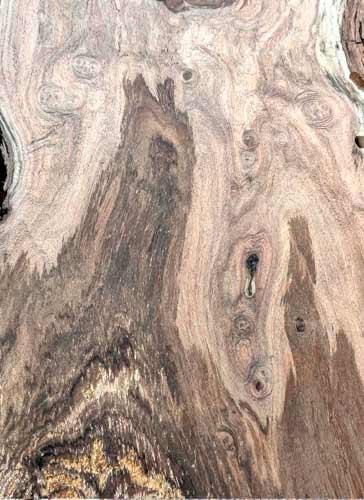Honey Mesquite Texas Pecan Wood