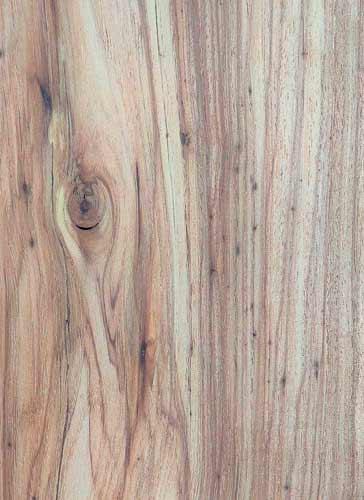 Texas Pecan Texas Pecan Wood