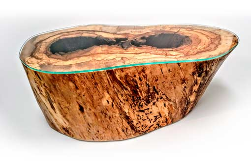 """Lightning Struck"" Pecan Tree Trunk with Glass Top Texas Pecan Wood"